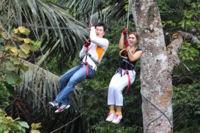 Top Tree Adventure